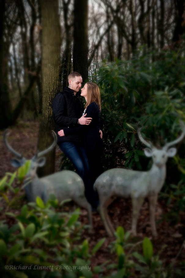 Patronus engagement shoot