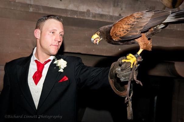 Bird of Prey display - wedding entertainment at Peckforton Castle