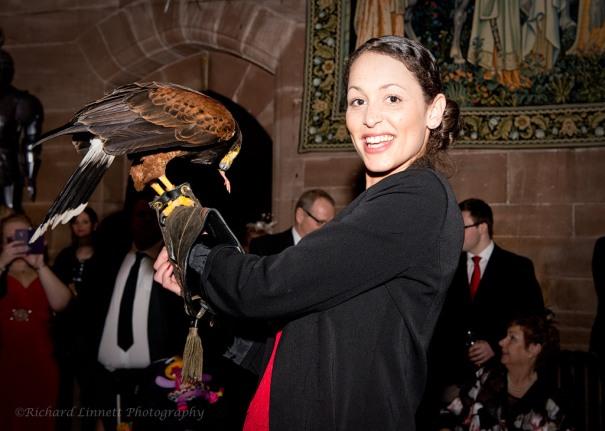 Peckforton Castle - birds of prey wedding entertainment display