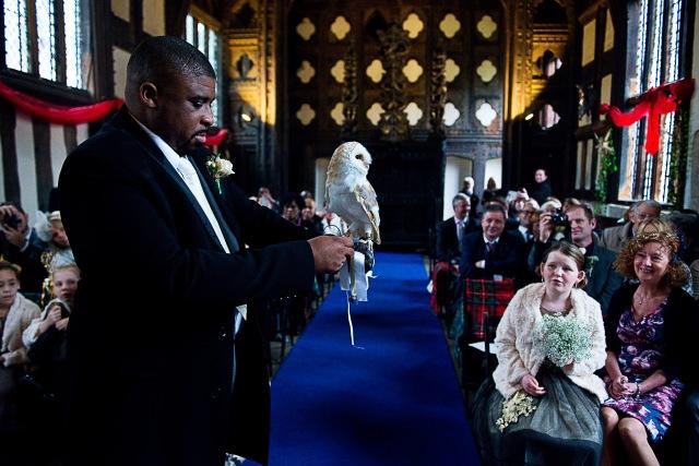 Barn owl brings groom the rings